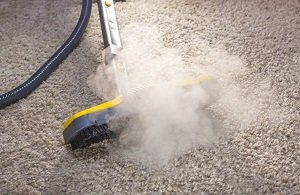 Carpet Cleaning: Employ an Expert or Do It Yourself?