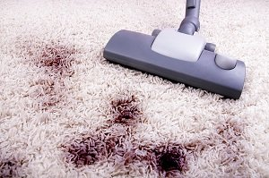 What to Know Before Hiring a Carpet Cleaner