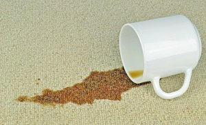 How to Eliminate Other Kinds of Carpet Stains