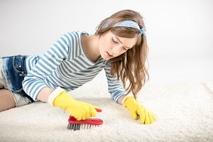 Professional Carpet Cleaning or DIY?