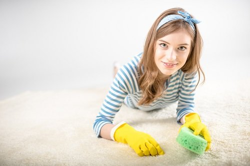 Carpet Cleansing Myths Debunked